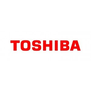 Toshiba 4 años de Servicio In Situ GOLD en Europa (virtual)